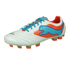 Puma PowerCat 1 SL FG Mens Leather Football Boots / Cleats - White